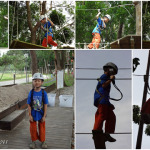 {Photo Story}- A High Rise  Forest Adventure