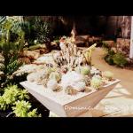 Cactus Garden at Phuket Botanic Gardens