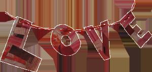 sf_heartbeat_icon_loveline