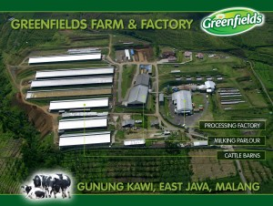 Greenfields Factory